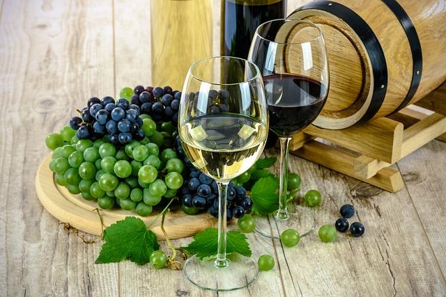 קורסי יין פופולארים בישראל